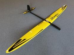 RCRCM Tomcat Evo Elektro 2.5m CFK Gelb/Schwarz mit Schutztaschen