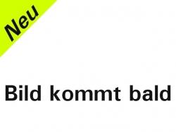Rumpf Gelb E-Angela GFK 2m Elektroversion von RCRCM